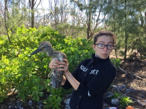 Analea Sterling and the baby heron, aka dinosaur, at Andros.